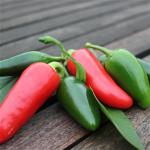 Sommerplanter i Hillerød - Jalapeno chili (styrke 5)